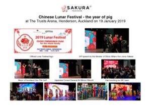 thumbnail of Activity Report WTV Lunar Fest 19 January 2019